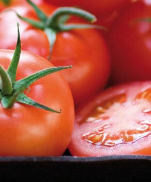tomate_nijar_b1